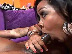 Busty paunchy vixen playing with big black dick bbw mpegs