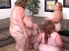 Wild BBW in hot sex movies