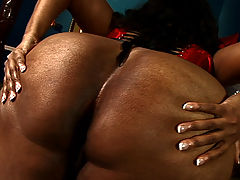 Bunny bends over to expose wet twat bbw mpegs