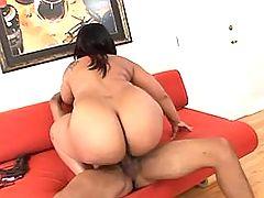 Horny black fatty rides dark cock on sofa bbw mpegs